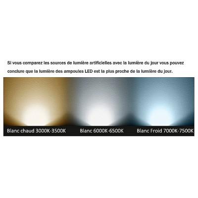 Ampoule LED E27 A60 10W BL-E27-A60-10 E27