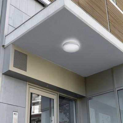 Plafonnier LED Opal 22.3W IP65 Dimmable Dali LEDS-C4 , 15-E053-14-CL , 15-E053-14-CL , plafonnier exterieur